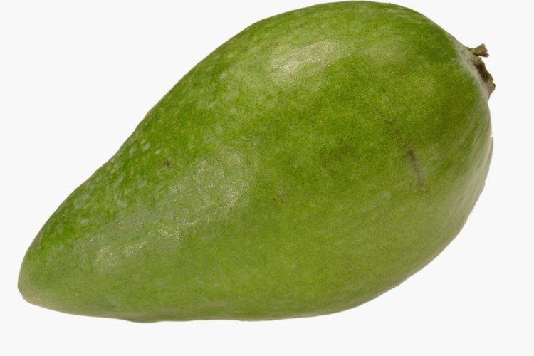Comprueba que la fruta esté madura.