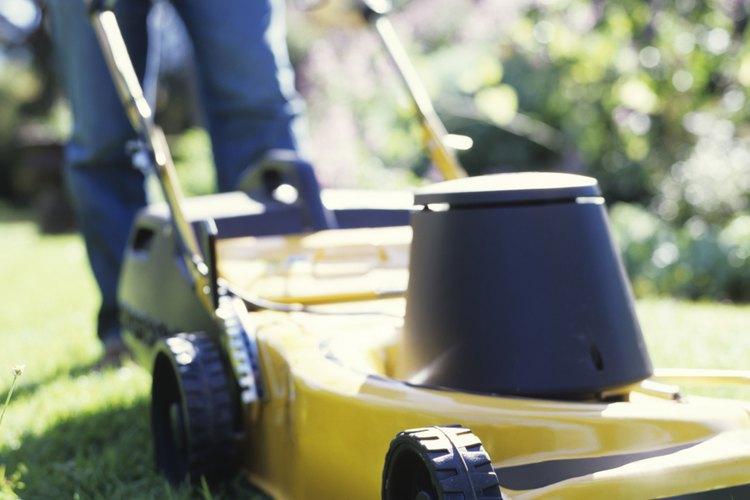 Cortar un césped muy corto suele generar tonos amarillentos poco atractivos.