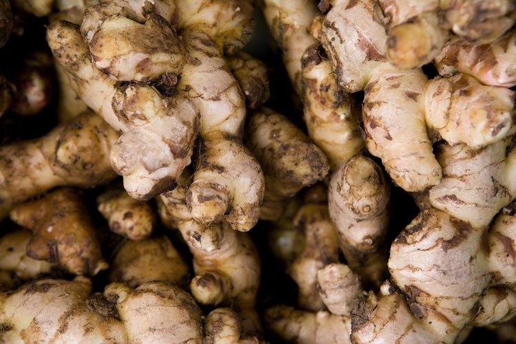 Las raíces de jengibre y galangal vienen en variedades diferentes.