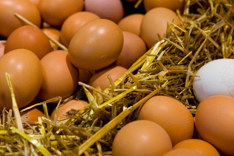 Los huevos en polvo mantienen muchos de los nutrientes originales.