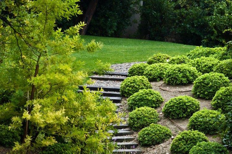 Un jardín con buena vista puede agregar belleza a tu hogar.