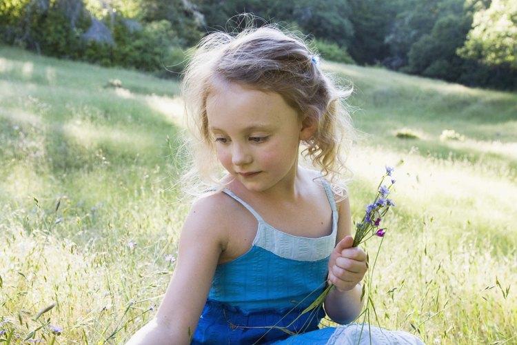 Levantar flores silvestres invoca amor por la naturaleza.