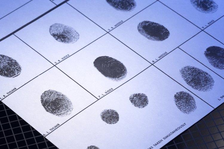La Oficina de Estadísticas Laborales no clasifica a los criminólogos en una categoría separada.