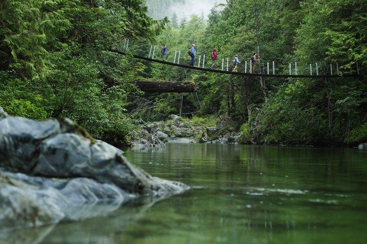Los puentes colgantes son divertidos para viajar a través de los límites de la naturaleza.