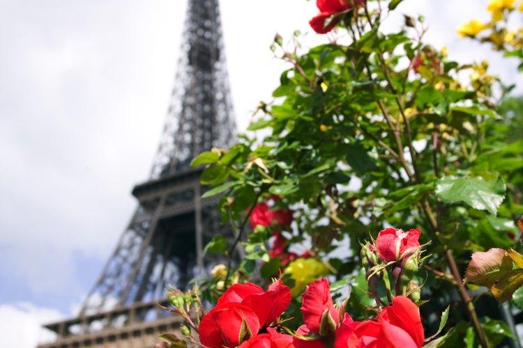 Calcomanías de pared de monumentos de Paris, tal como la Torre Eiffel.