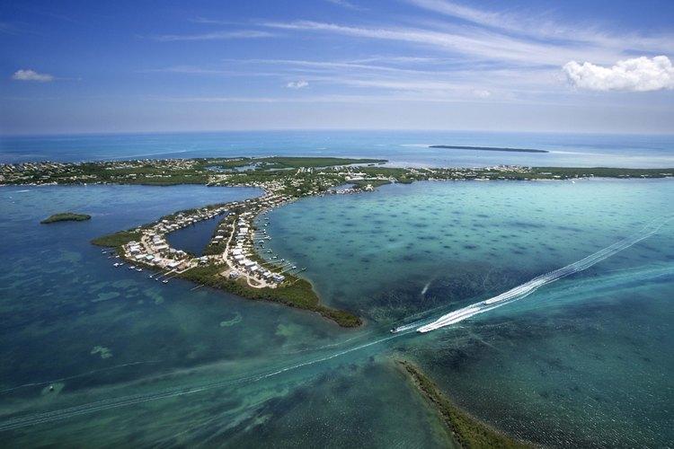 En el suroeste de Florida, puedes practicar el snorkel justo en las afueras de la playa.