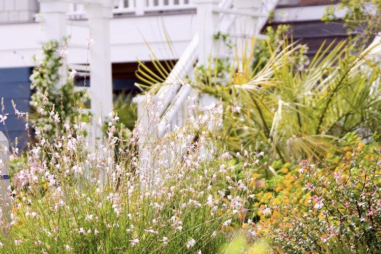 Los arcos florales crean interés en jardines y fiestas.