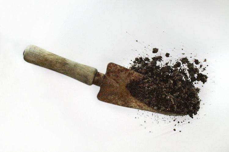 La evaluación del suelo sirve para conocer los niveles de nitrógeno, potasio y fósforo.