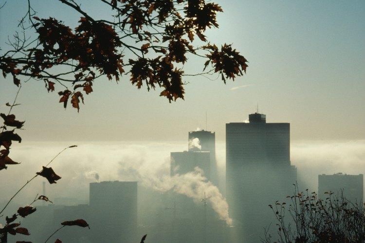 Con tu ayuda se puede reducir esa contaminación ambiental.