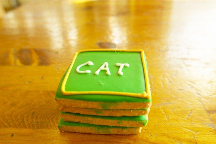 Utiliza bocadillos para gato como recompensa cuando enseñes nuevos trucos a tu gato.