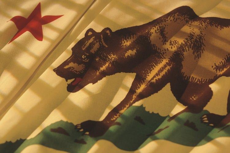 Conducir sin licencia en el estado de California implica sanciones que van de sólo multas hasta encarcelamiento.