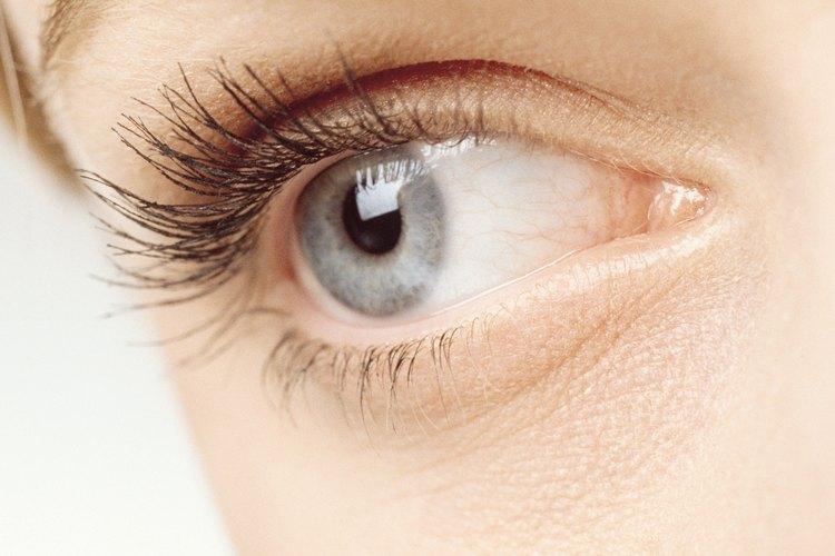 Su trabajo se centra en la salud general del sistema visual, así como en el cuidado preventivo de los ojos.