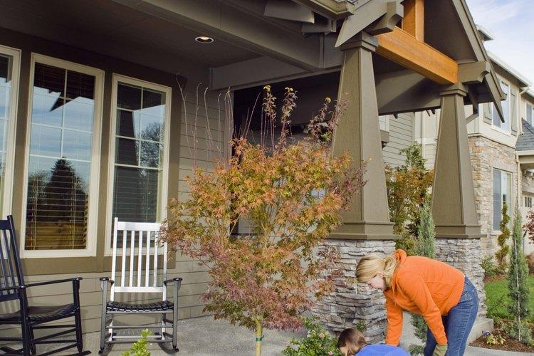 Informarte sobre la plantas que vas plantar alrededor de tu casa puede ahorrarte dinero.