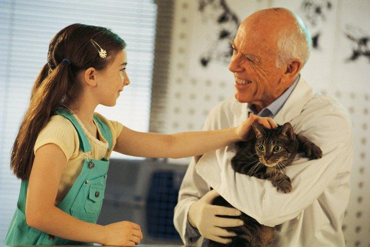 Pídele a tu niño que te ayude a escribir la nota de agradecimiento para tu veterinario.