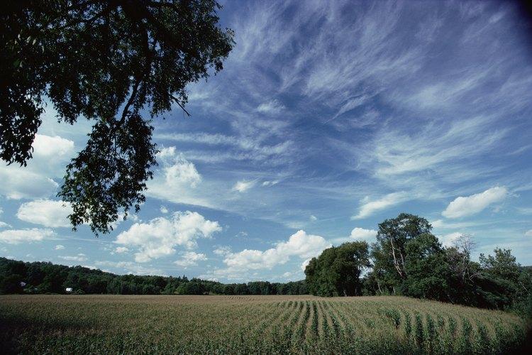 El paisaje proporcionó a los agricultores muchas oportunidades para la siembra de granos.