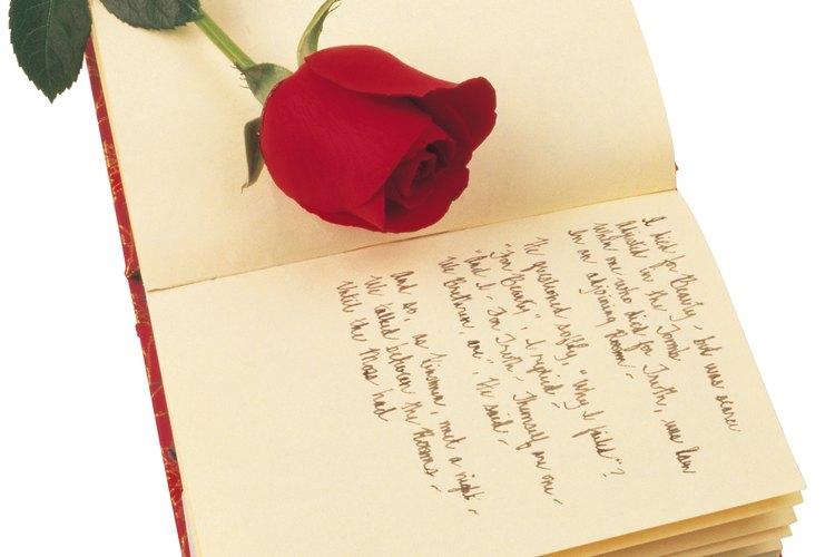 La Fundación de Poesía ofrece una variedad de recursos para ayudar a los visitantes en el estudio, la lectura y la escritura de la poesía.