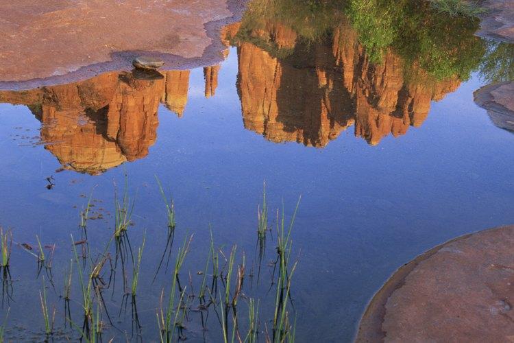 El tranquilo entorno de roca roja de Sedona está a 30 millas de la tierra del esquí.