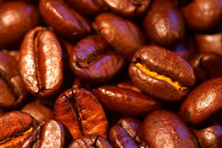 Los granos de café se cultivan alrededor del mundo en lugares cercanos al ecuador.