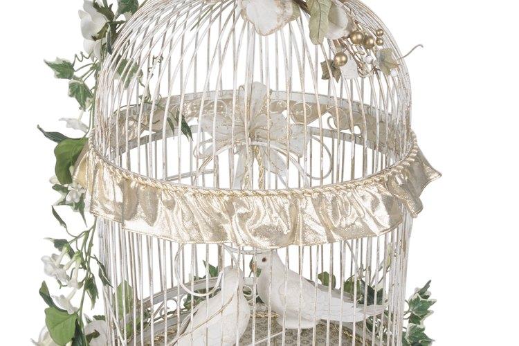 Las tórtolas blancas se usan en las ceremonias para simbolizar paz y esperanza.