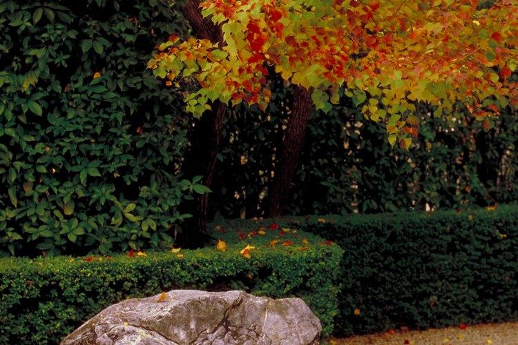 Las rocas de imitación con cemento pueden ser una adición hermosa para tu patio.