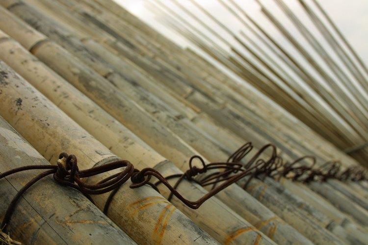 La caña de bambú se utiliza para hacer muebles y cercas.