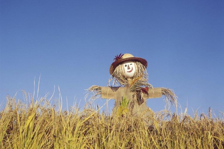 Un espantapájaros es una efigie de un ser humano, específicamente diseñado para asustar a las aves fuera de la propiedad de alguien.