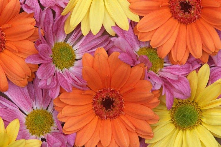 Sumerge en cera algunas flores de tu boda para disfrutarlas un poco más de tiempo.