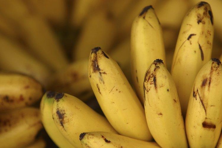 Utiliza plátanos maduros para el mejor sabor.