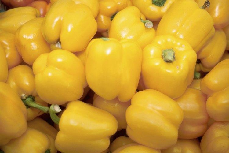 Las variedades de pimiento se clasifican en dos grandes grupos según su sabor en dulces y picantes.