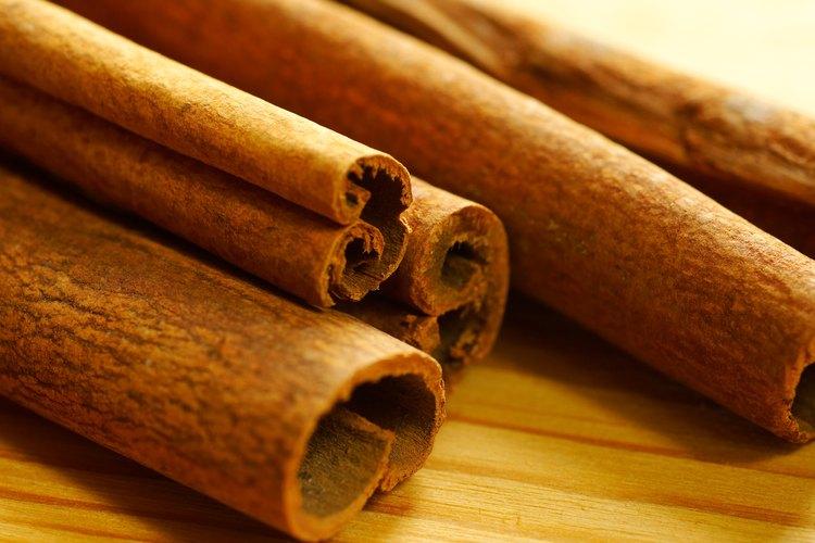 La corteza torcida, seca del interior del árbol de canela es un artículo importante de exportación para la India y otros países semitropicales.