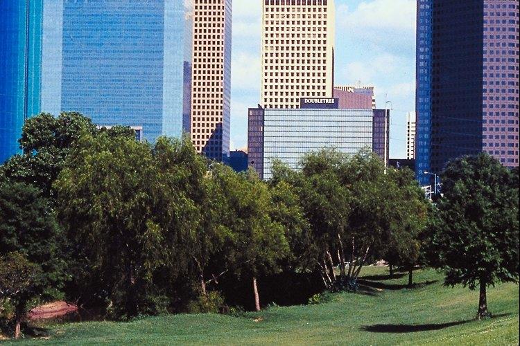 Houston ofrece actividades para todos los gustos.