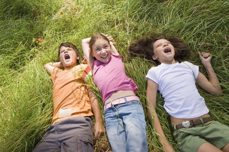 Mantén tu patio libre de pulgas y garrapatas utilizando aerosoles.