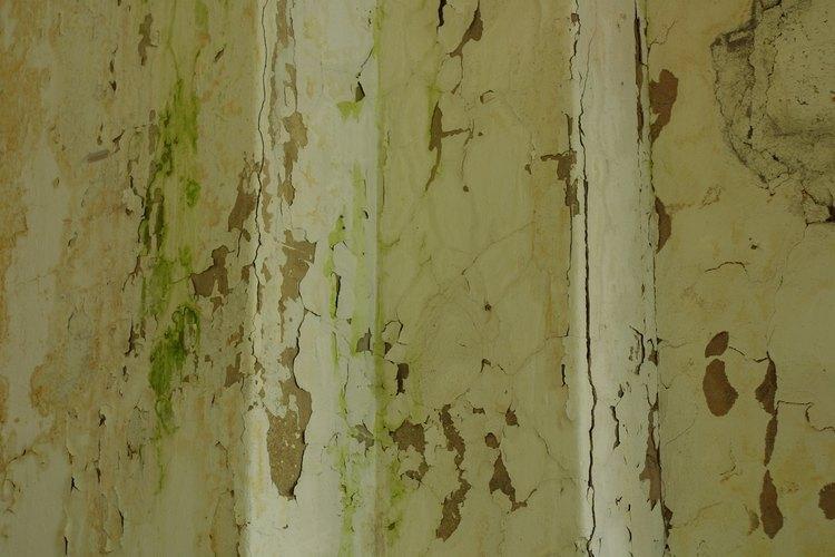 Raspa la antiestética pintura descascarada usando un raspador de pintura.