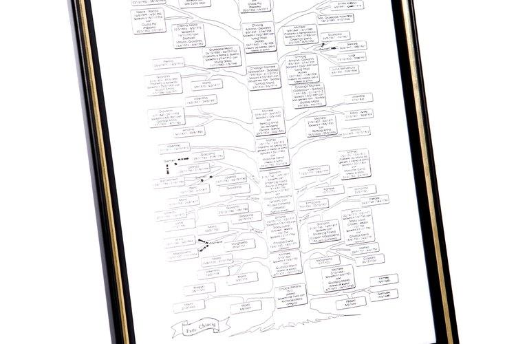 La genealogía es una investigación de tus ancestros.