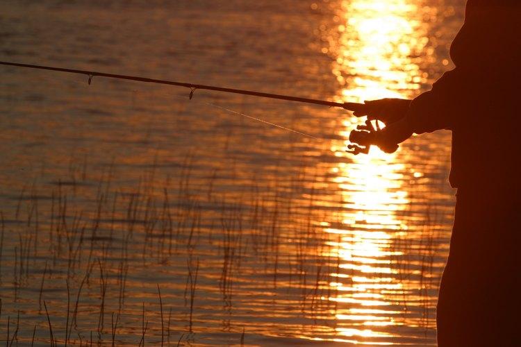 La pesca es uno de los pasatiempos favoritos en Cowan Lake.