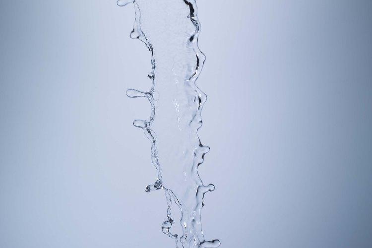 Las semillas de moringa son una forma natural y económica de limpiar el agua sucia.