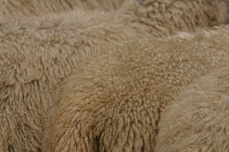 La lana está hecha de la lana de oveja o cabras y que era y es utilizada en la ropa de día, trajes de mañana y el ropa formal de tarde, y en todas las estaciones.