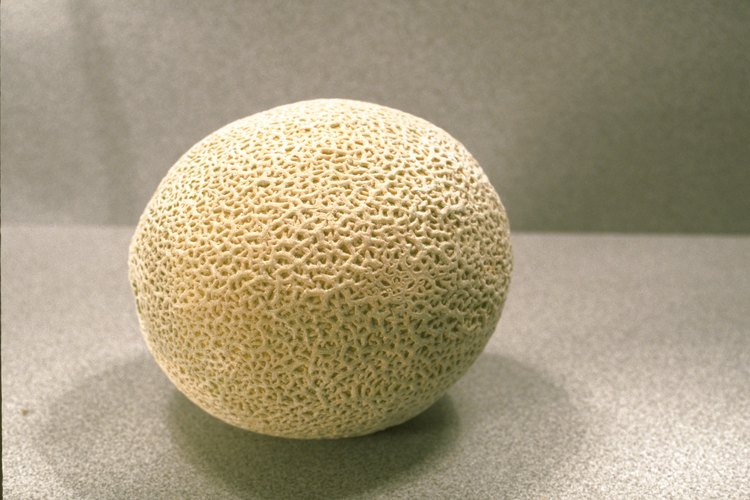 Incorpora cáscaras de melón y otros restos de comida a la pila de compost.