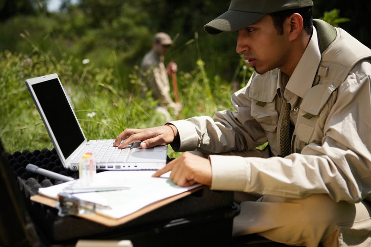 Los mejores zoólogos se involucran en el trabajo de campo.
