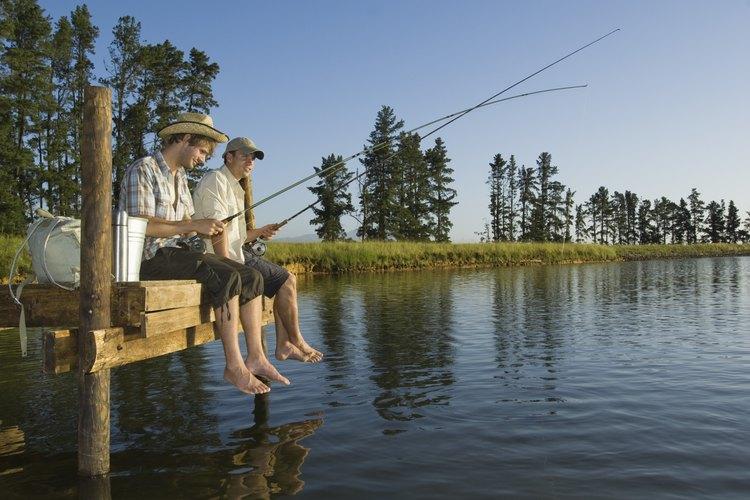 Trae tu equipo de pesca y disfruta de tu pasatiempo favorito desde el muelle.