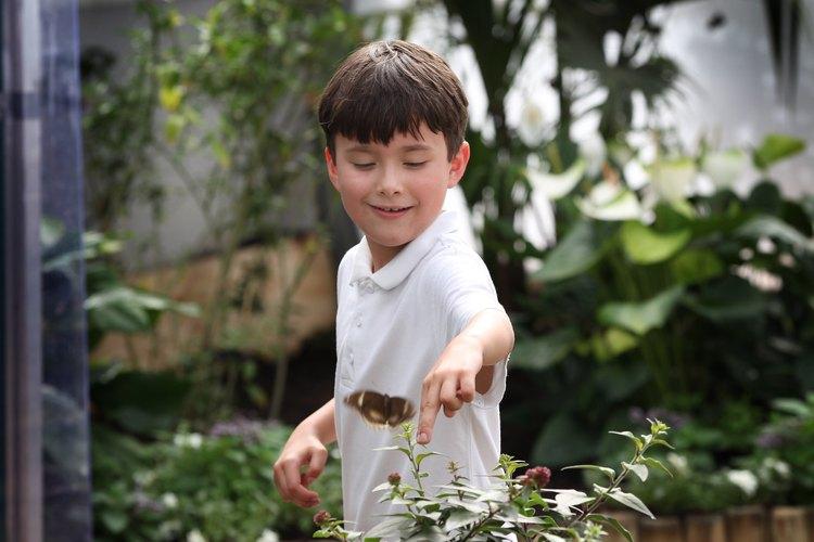 Si tu hijo de 10 años adora la naturaleza, haz la fiesta de cumpleaños afuera.