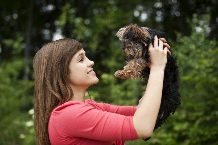 Mujer sosteniendo a un cachorro