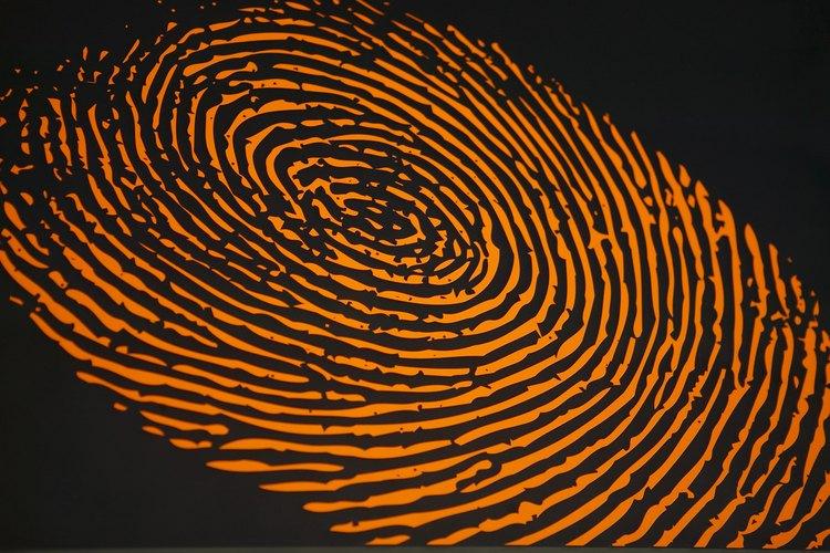 Los investigadores a veces utilizan polvos fluorescentes para levantar las huellas dactilares.