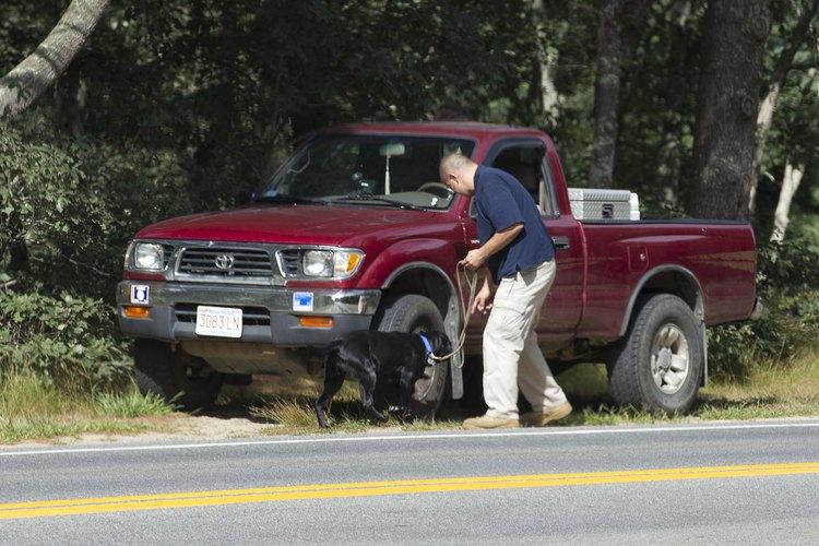 El lugar más seguro para que viaje tu perro en su transportadora es fijándola al fondo de tu camioneta.