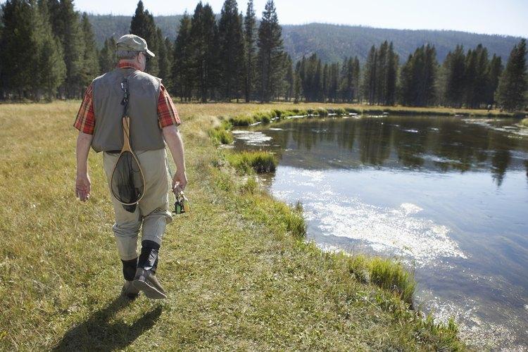 Los campamentos cerca de las represas y arroyos proporcionan áreas para pescar trucha.