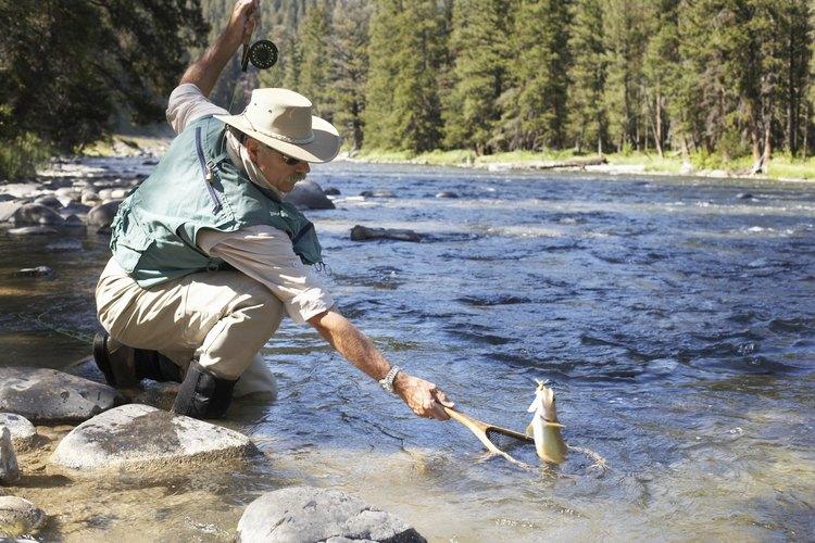 Anda de pesca a Lake Dillon.