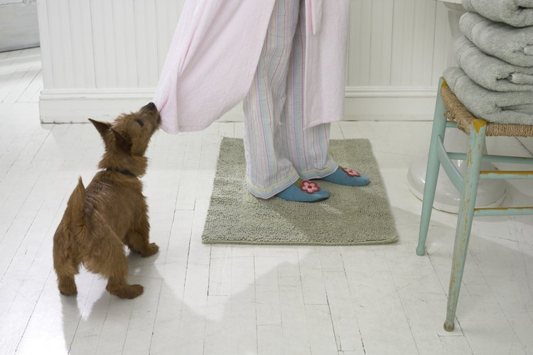 Las alfombras con base de goma son ideales para lugares húmedos.