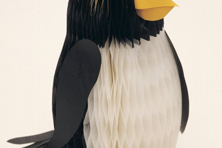 Puedes crear un disfraz de pingüino con un traje negro y un poco de creatividad.