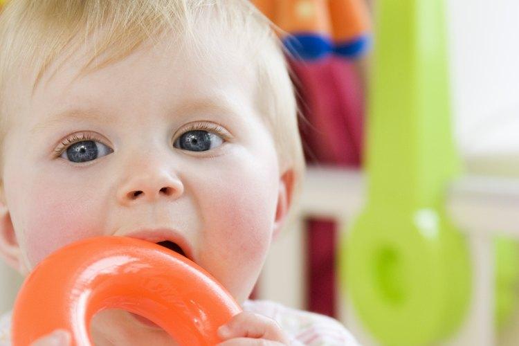 Cuando se trata de alimentos para la dentición, la seguridad es lo primero.