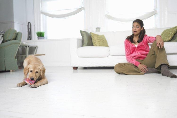 Usa vinagre para neutralizar los malos olores en tu hogar.